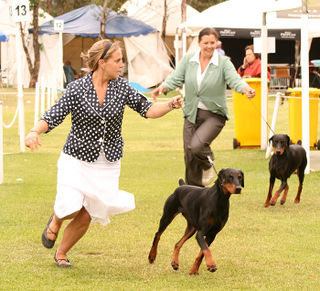 Dobes-breeder-group
